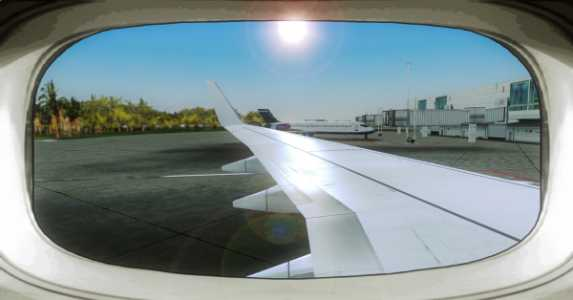 Wing View 6