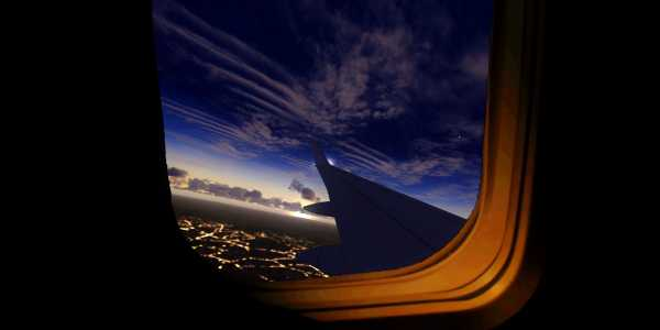 Wing View 3 (dawn)